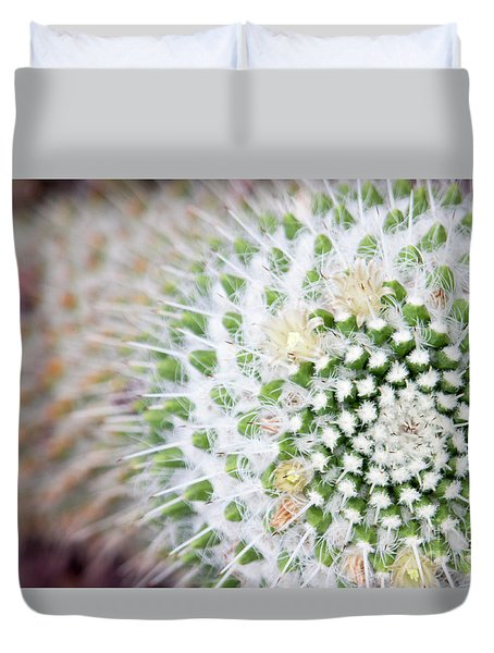 Madrid Botanical Garden 1 Duvet Cover