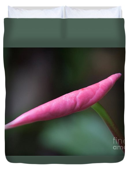 Madrid Botanical Garden 2 Duvet Cover