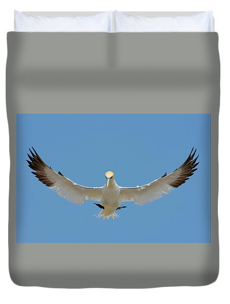 Duvet Cover featuring the photograph Maestro by Tony Beck