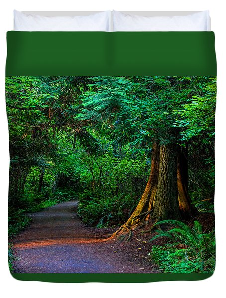 Magic Moment Duvet Cover by Alana Thrower