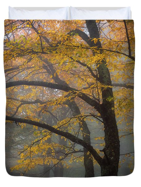 Magical Forest Blue Ridge Parkway Duvet Cover