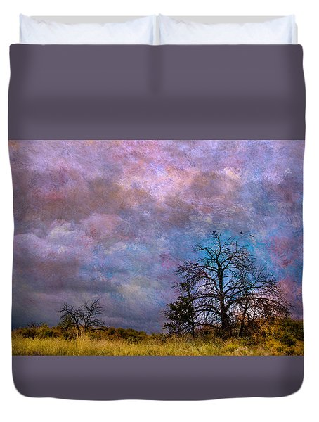 Magical Sky Duvet Cover by Carolyn Dalessandro