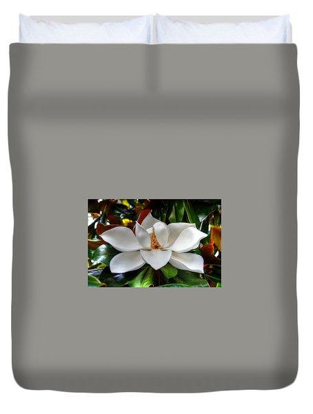 Magnolia Bloom Duvet Cover