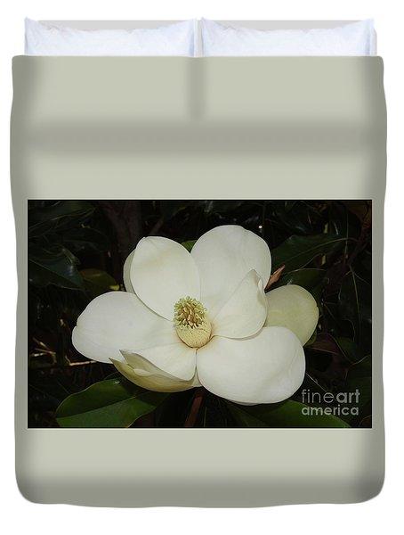 Magnolia Blossom 5 Duvet Cover