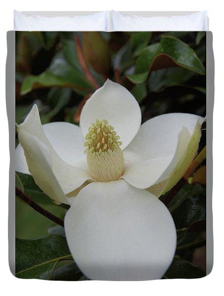 Magnolia Blossom 6 Duvet Cover