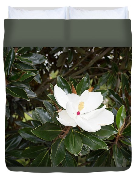 Duvet Cover featuring the photograph Magnolia Blossom by Linda Geiger