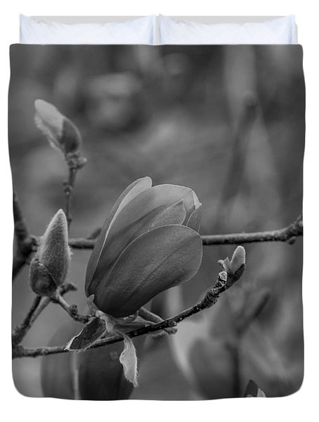 Magnolia Bw Blooms Buds Branches Duvet Cover
