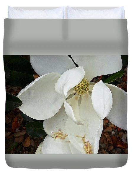 Magnolia Duvet Cover by Matthew Bamberg