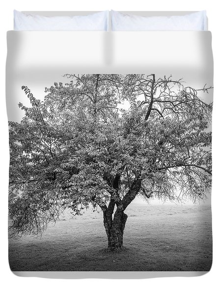 Duvet Cover featuring the photograph Maine Apple Tree In Fog by Ranjay Mitra
