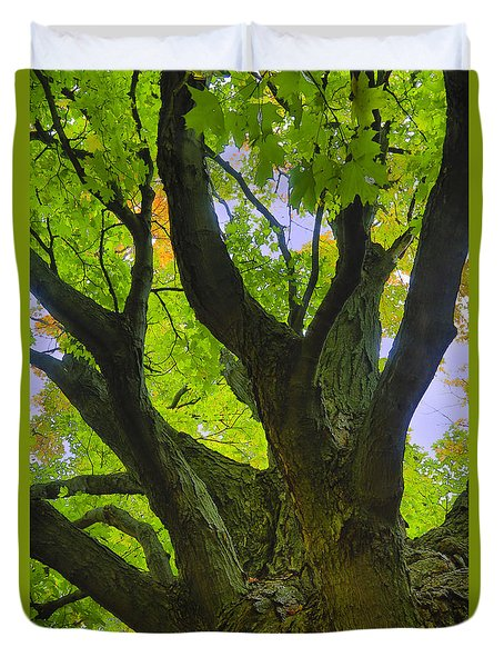 Duvet Cover featuring the photograph Majestic Maple 2 by Gary Hall