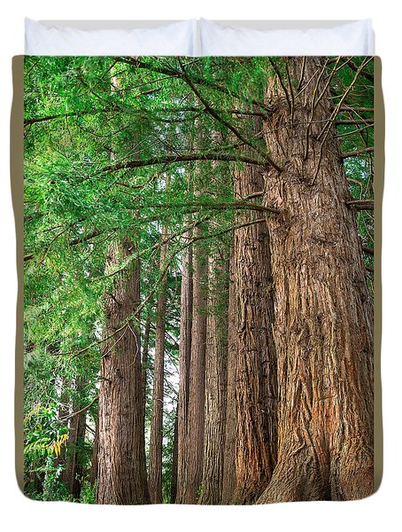 Majestic Redwoods Duvet Cover by Martin Capek