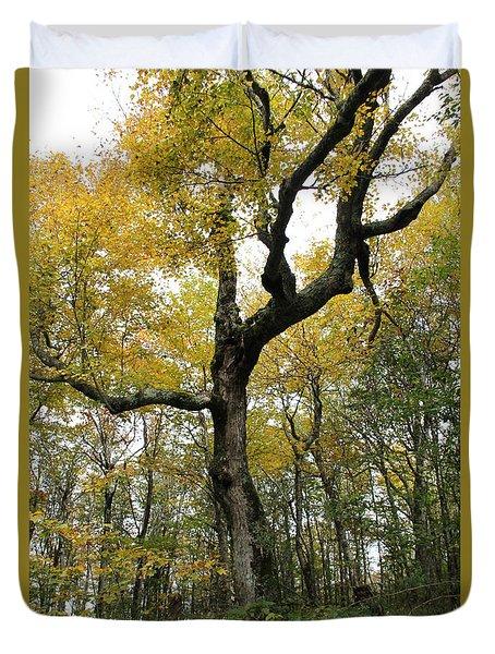 Majestic Tree Duvet Cover