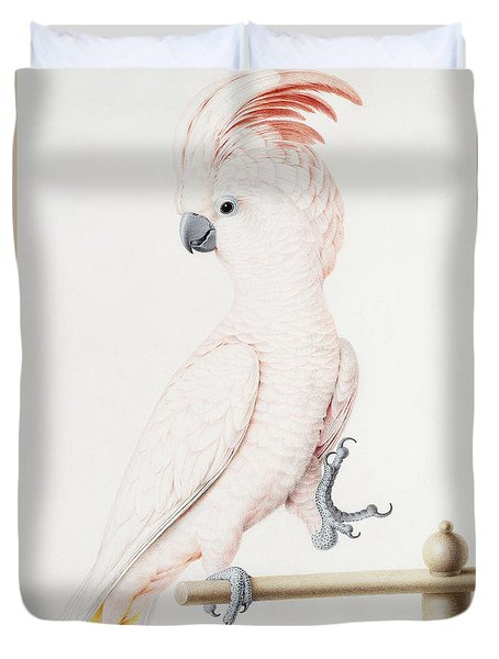 Major Mitchell's Cockatoo Duvet Cover by Nicolas Robert
