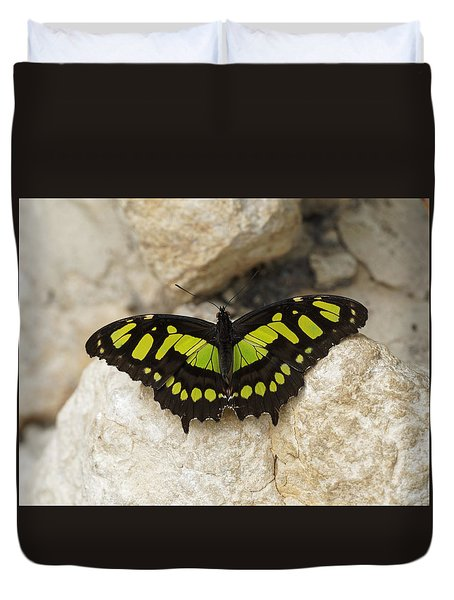 Duvet Cover featuring the photograph Malachite Butterfly - Siproeta Stelenes by Paul Gulliver
