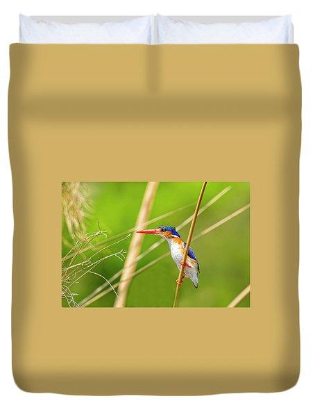 Malalchite Kingfisher Duvet Cover