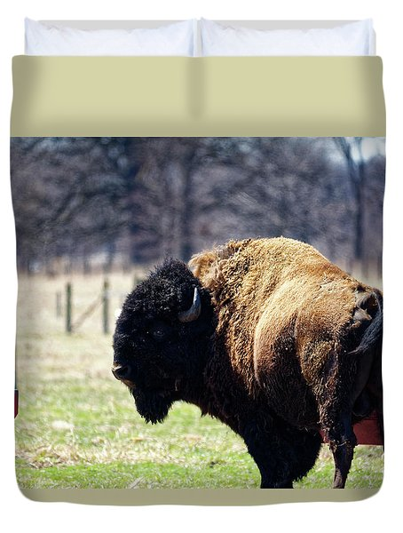 Male Bison Duvet Cover