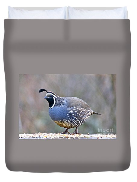 Male California Quail Duvet Cover by Sean Griffin