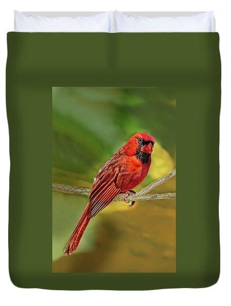 Male Cardinal Headshot  Duvet Cover