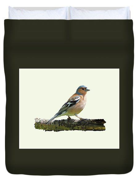 Male Chaffinch, Cream Background Duvet Cover