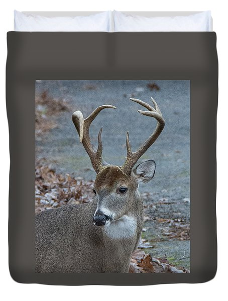 Duvet Cover featuring the photograph 7-point Buck by John Black