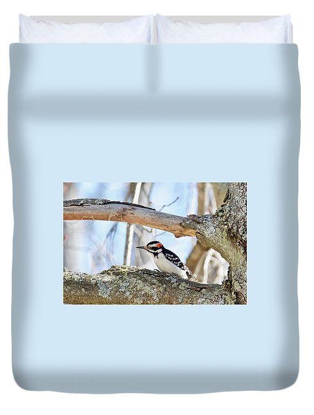 Duvet Cover featuring the photograph Male Downey Woodpecker 1112 by Michael Peychich