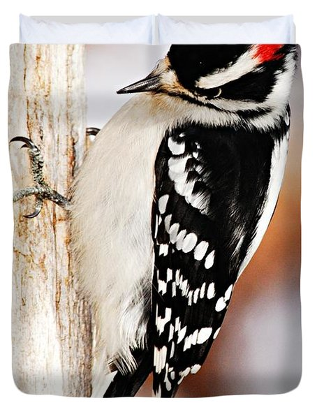 Male Downy Woodpecker 3 Duvet Cover by Larry Ricker