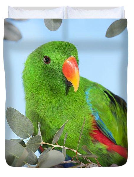 Male Eclectus Parrot Eclectus Roratus Duvet Cover