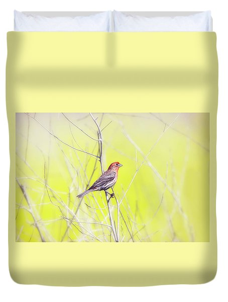 Male Finch On Bare Branch Duvet Cover