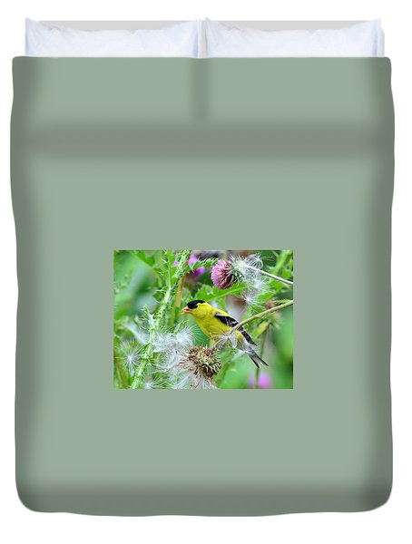 Male Goldfinch Duvet Cover by Kathy Eickenberg