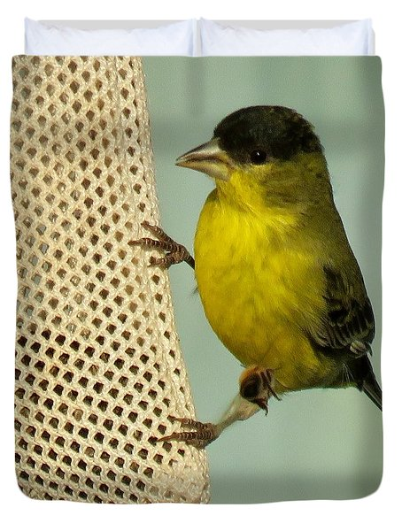Male Goldfinch On Sock Feeder Duvet Cover