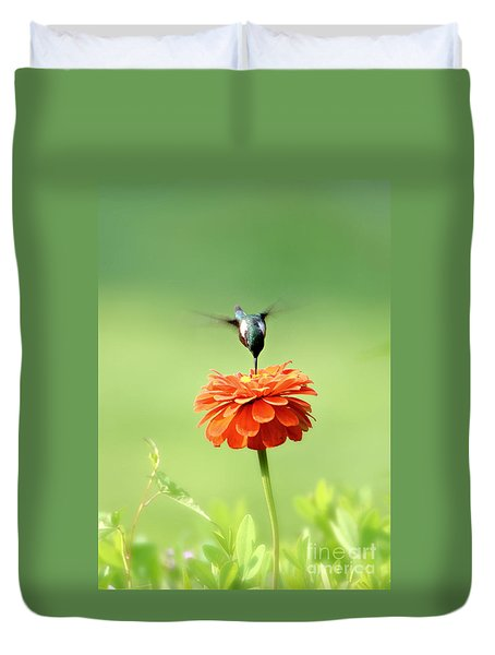 Male Hummingbird Duvet Cover
