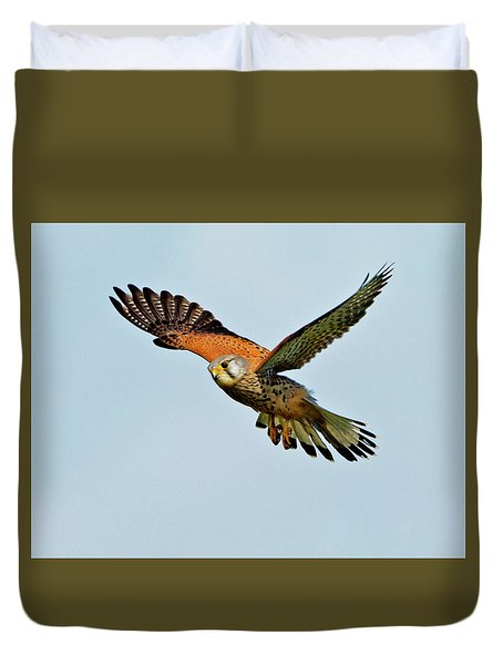 Male Kestrel In The Wind. Duvet Cover