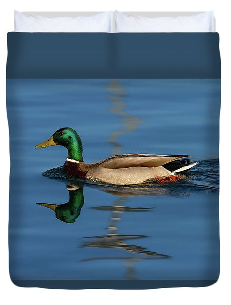 Male Mallard Or Wild Duck, Anas Platyrhynchos, Portrait Duvet Cover