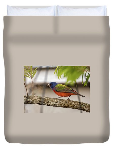 Male Painted Bunting Duvet Cover