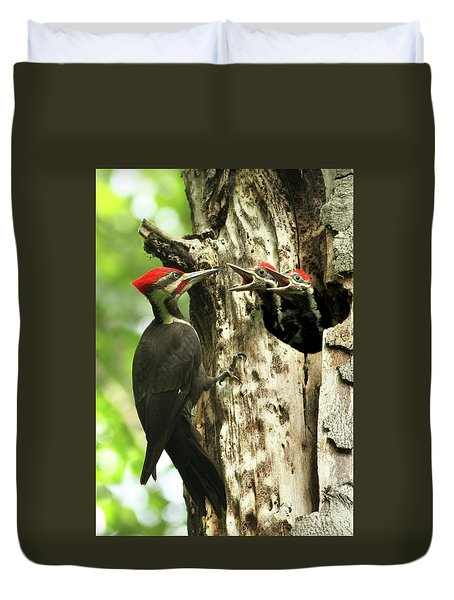 Male Pileated Woodpecker At Nest Duvet Cover