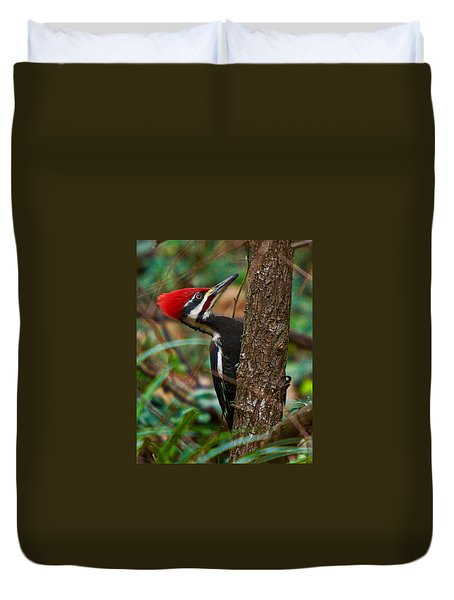Male Pileated Woodpecker Duvet Cover