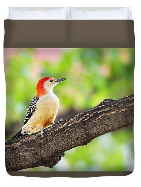 Male Red-bellied Woodpecker Duvet Cover