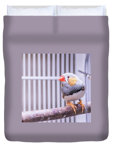 Male Zebra Finch Duvet Cover