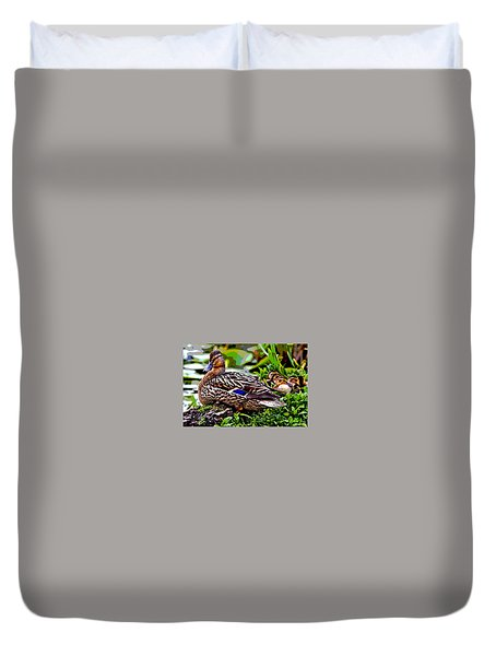 Mallard And Chicks Duvet Cover by Charles Shoup