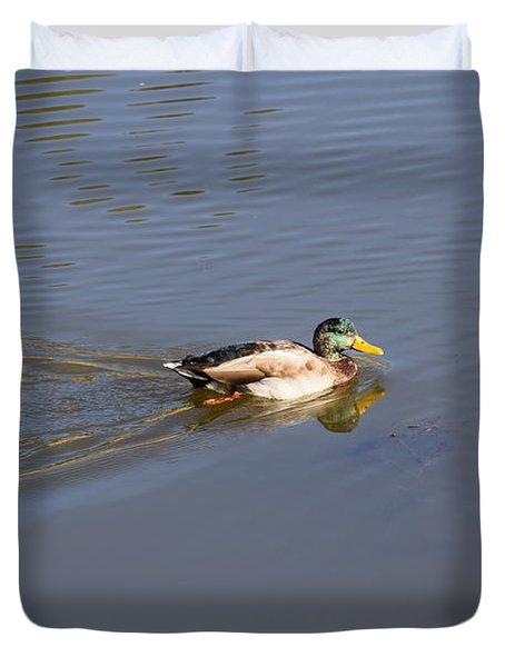 Mallard Duck Burgess Res Co Duvet Cover