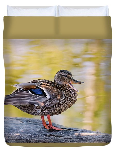 Mallard Duck Duvet Cover
