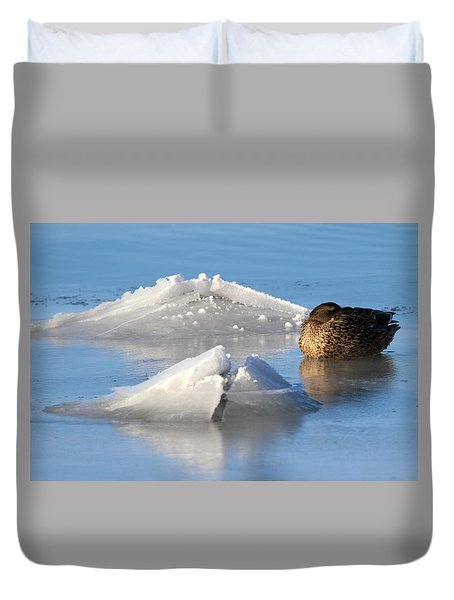 Mallard Duck Mount Sinai New York Duvet Cover