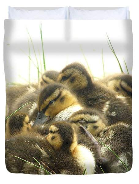 Duvet Cover featuring the photograph Mallard Ducklings by Angie Rea