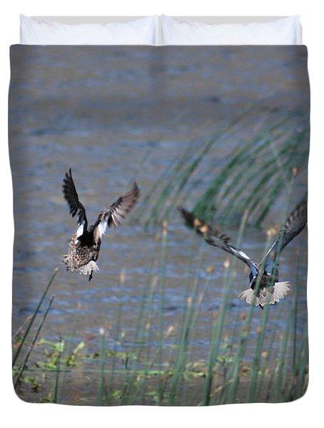 Mallard Ducks - Nelson Resevior White Mountains Duvet Cover by Donna Greene