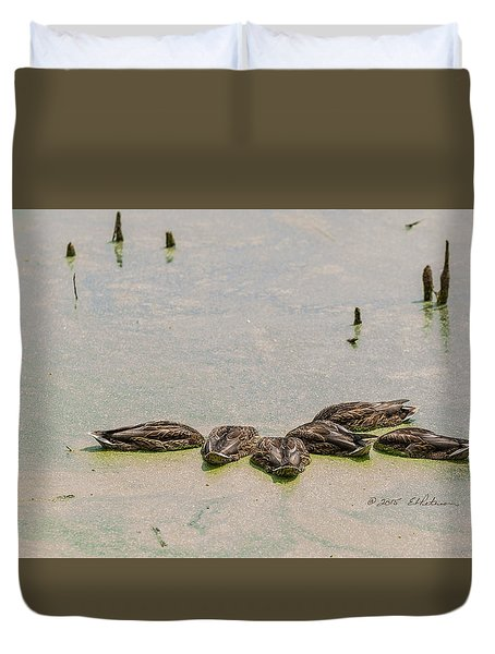 Mallard Fine Dining Duvet Cover by Edward Peterson