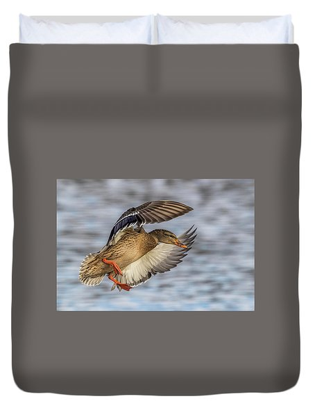 Mallard With Cupped Wings Duvet Cover by Paul Freidlund
