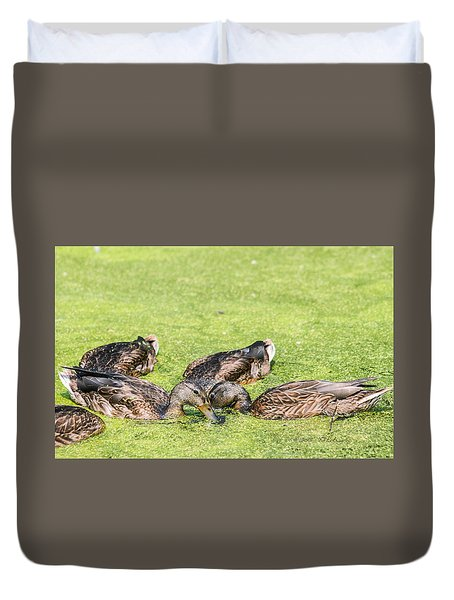 Mallards Coming Up For Air Duvet Cover by Edward Peterson