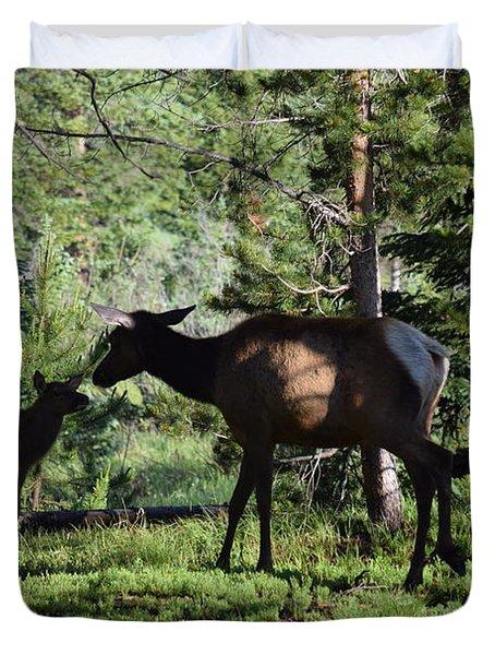 Elk Calf - Mother Rmnp Co Duvet Cover