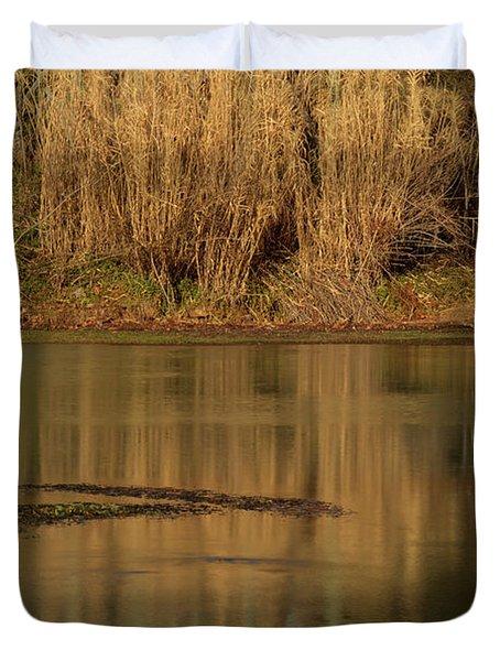Mammoth Spring Arkansas Duvet Cover by Douglas Barnett