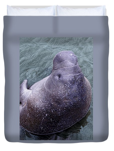 Duvet Cover featuring the photograph Manatee Seen From Dock- Up Close And Personal by Penny Lisowski